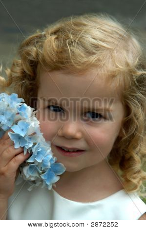 Bouquet By Cheek