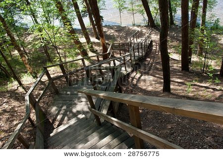 Stairway To Forest Lake