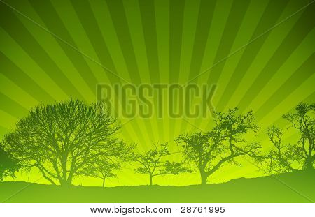 Green Sunset Light Rays Nature Background