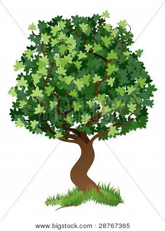 Ilustración del árbol