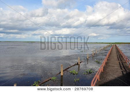Bridge To Lake