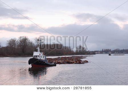 Tug Boat Towing Log Boom, Fraser River