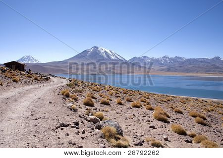 Lagunas Miscanti and Meniques in Atacama