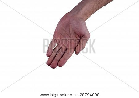 Open Palm Young Male Hands