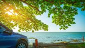 Blue Sport Suv Car Parked By The Tropical Sea Under Umbrella Tree. Summer Vacation At The Beach. Sum poster