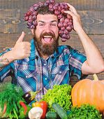 Farming Concept. Farmer Proud Of Grapes Harvest. Man Hold Grapes Wooden Background. Farmer Bearded G poster