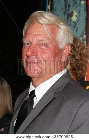 LOS ANGELES - OCT 18:  Frosty Hesson arrives at  the