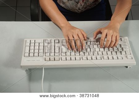 Famale Hands Using Keyboard.