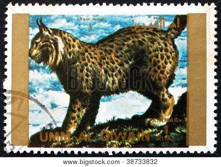 Postage stamp Umm al-Quwain 1972 Lynx, Animal