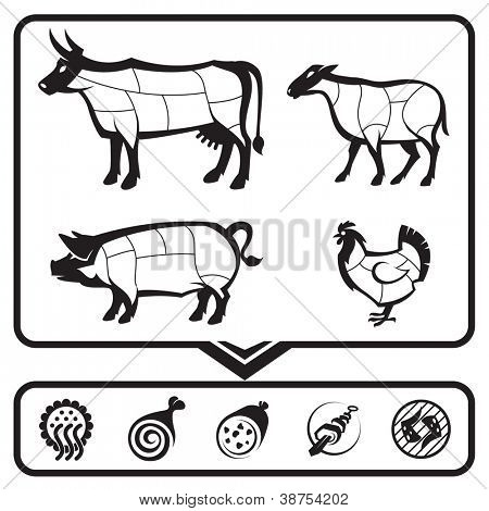 plan for cutting meat cows, sheep, pigs and chickens