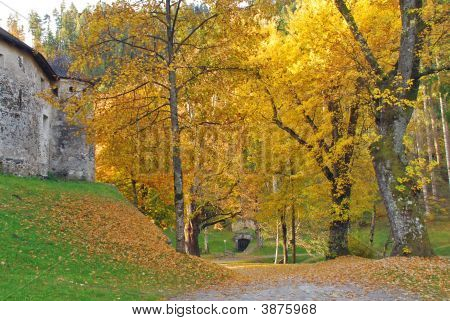 Autumn View Of Gardens At Schloss Bruck  Lienz Austria
