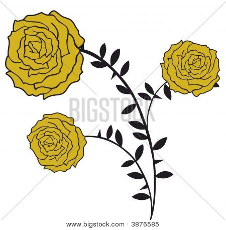 Three Golden Roses