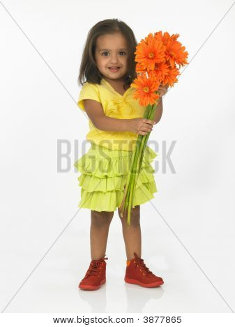 Asian Girl Holding Gerbera Flowers
