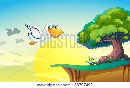 illustration of a pelican flying in nature