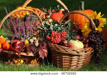 Autumn Goodies