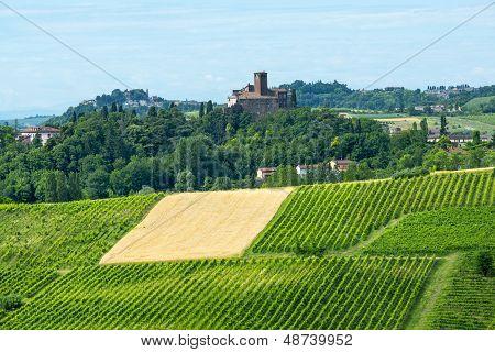 Monferrato (italy)