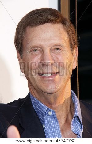 LOS ANGELES - JUL 31:  Bob Einstein arrives at the