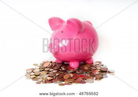 Piggy Bank Coins