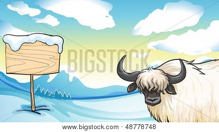 Illustration of a cashmere on a snowy mountain with a wooden signboard