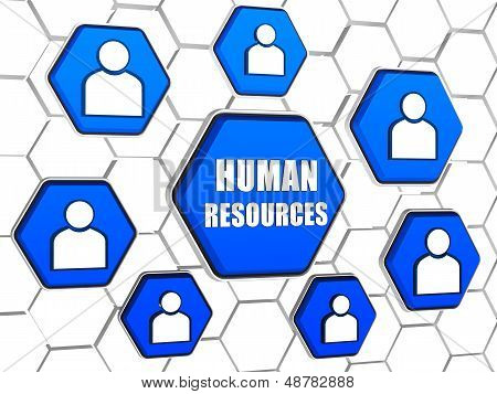 Human Resources And Person Signs In Blue Hexagons