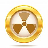 pic of radium  - Round glossy icon with brown design on gold background - JPG