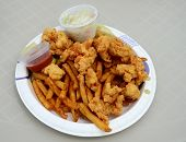pic of conch  - fried conch fritters with coleslaw and french fries on a paper plate - JPG