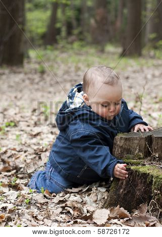 Baby Child In Forest