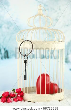 Heart in decorative cage on winter background