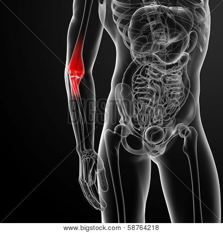 3d render illustration painful elbow -