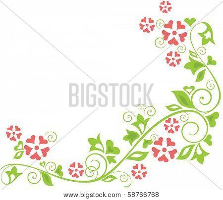 Floral summer border