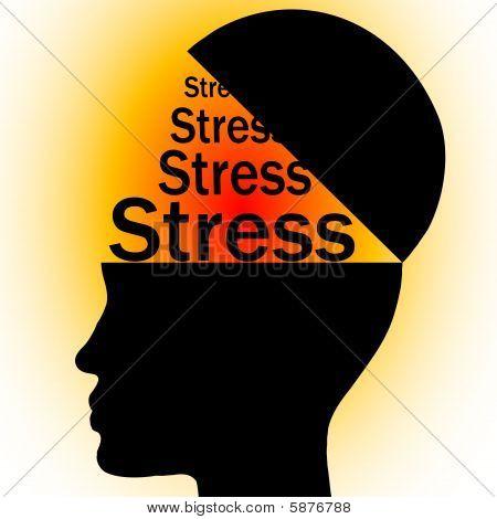 stress in head