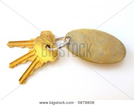 3 Gold Keys And Blank Keychain On White
