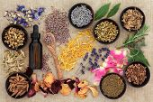foto of witch  - Herbal naturopathic medicine selection also used in pagan witches magical potions over old paper background - JPG