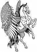 image of winged-horse  - pegasus mythological winged horse - JPG