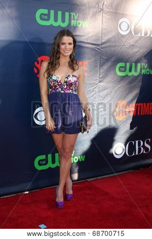 LOS ANGELES - JUL 17:  Melissa Claire Egan at the CBS TCA July 2014 Party at the Pacific Design Center on July 17, 2014 in West Hollywood, CA