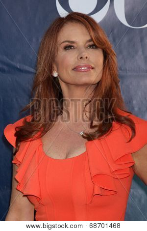 LOS ANGELES - JUL 17:  Roma Downey at the CBS TCA July 2014 Party at the Pacific Design Center on July 17, 2014 in West Hollywood, CA