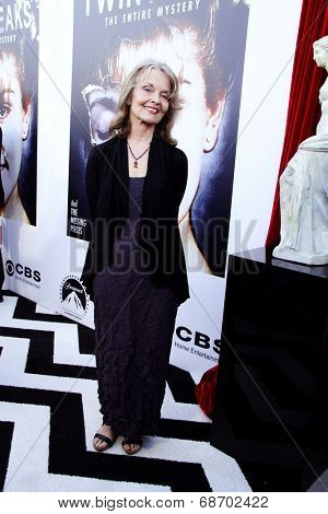 LOS ANGELES - JUL 16:  Gracwe Zabriskie at the 'Twin Peaks - The Entire Mystery' Blu-Ray/DVD Release Party And Screening at the Vista Theater on July 16, 2014 in Los Angeles, CA