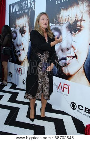 LOS ANGELES - JUL 16:  Sheryl Lee at the 'Twin Peaks - The Entire Mystery' Blu-Ray/DVD Release Party And Screening at the Vista Theater on July 16, 2014 in Los Angeles, CA