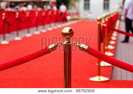 Path To Success, Red Carpet