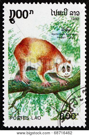 Postage Stamp Laos 1992 Pygmy Loris, Primate
