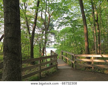 Looking out towards the Illinois River from Wooden Steps at Lonetree Canyon at Starved Rock