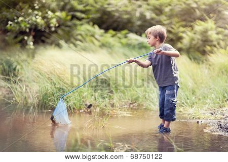 Boy in a pond with a fishing net catching fish in the summer sun concept for childhood, healthy lifestyle and vacation