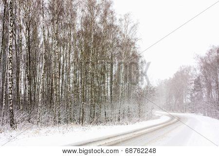Snowy Land Road