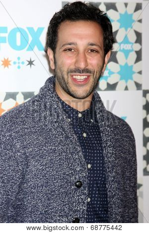 LOS ANGELES - JUL 20:  Desmin Borges at the FOX TCA July 2014 Party at the Soho House on July 20, 2014 in West Hollywood, CA