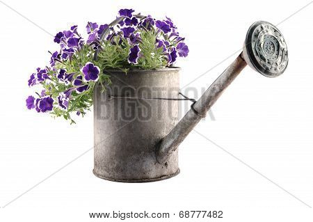 Zinc Watering Can With Petunias