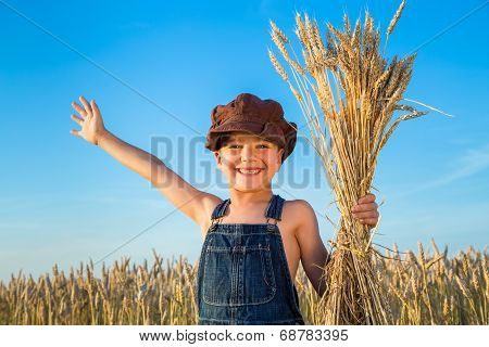 Boy on wheat field