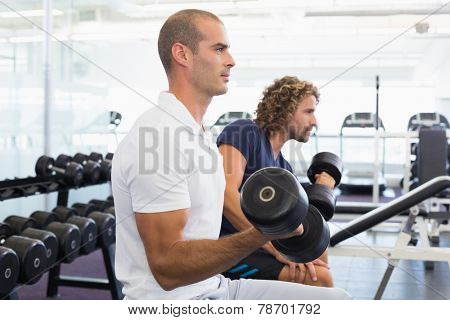 Side view of sporty young men exercising with dumbbells in the gym