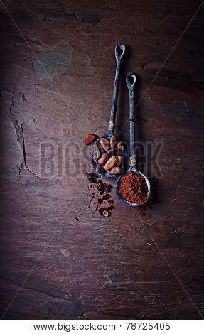 Cocoa beans and cocoa powder on iron spoons