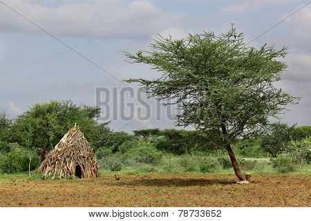 Houses Of People From A Tribe Hamer