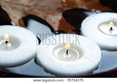Tree white candles floating with leaves on water in bowl